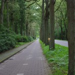 Cycle path in to Eindhoven