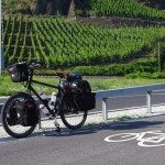 Nomad in wine country