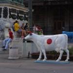 Belgrade art cows
